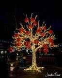 Chinese New Year Lantern Tree