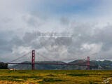 The Golden Gate Bridge from Crissy Field