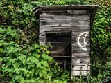 Abandoned Shed In Sandon
