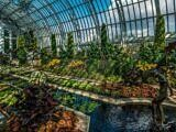 Sunken Garden at the Marjorie McNeely Conservatory – St. Paul, Minnesota