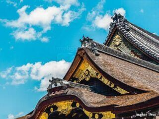 Three Tiered Roof of Nijo Castle
