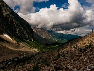 Valley at Mount Edith Cavell